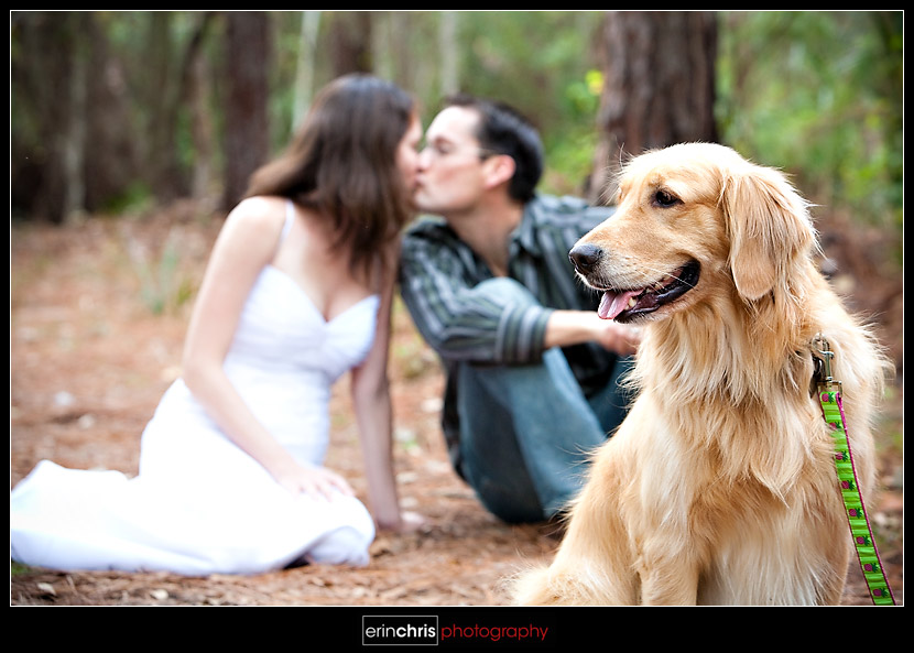 trash the dress picture with a dog