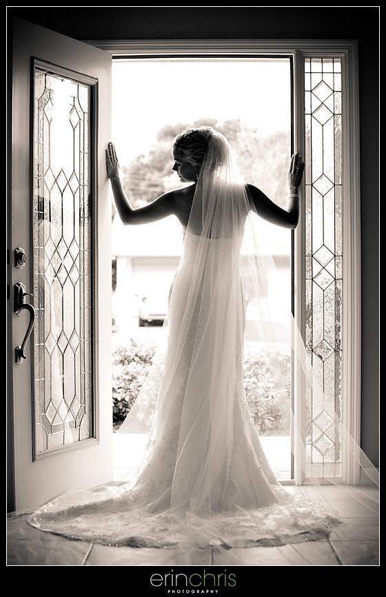Bridal portrait with a long veil in St. Petersburg, Florida.